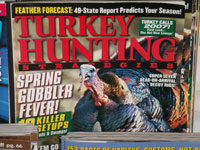 Turkey Hunting Strategies